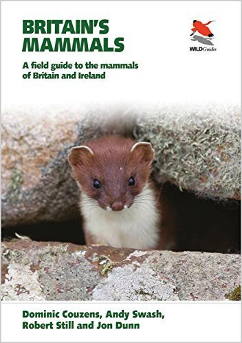 Britain's Mammals: Britain's Mammals: A Field Guide to the Mammals of Britain and Ireland